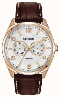 Citizen Mannen nam gouden champagne wijzerplaat bruine lederen band horloge AO9023-01A